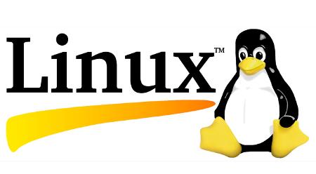 rage linux port
